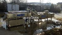 大姜清洗机厂家