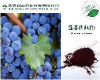 蓝莓花青素25%(GB标准)