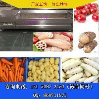 厂家直销红薯毛刷清洗机