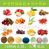 菠萝酵素粉