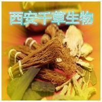 金钱草浸膏粉优质原料植物提取物
