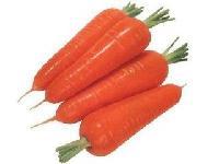 胡蘿卜香精生產廠家