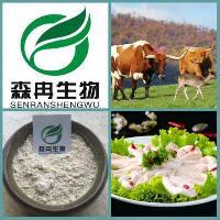 牛骨胶原蛋白 牛骨多肽95%  品质保障 1kg起订