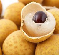 海南特产水果龙眼桂圆
