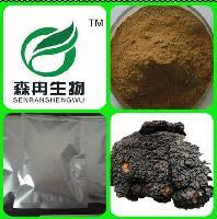 优质原料萃取 白桦茸提取物 10:1  白桦茸多糖