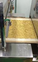 低温烘焙熟黄豆设备