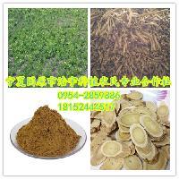 黄芪提取物厂家 黄芪多糖30% 功效黄芪浸膏 速溶黄芪粉价格