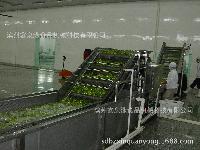 专业定做不锈钢中央厨房蔬菜清洗加工生产线