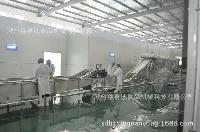 果蔬速冻前处理生产线、中央厨房蔬菜清洗机