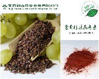 葡萄籽提取物
