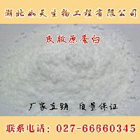 化妆品级皮胶原蛋白价格