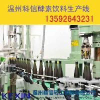 成套酵素饮料生产线 酵素饮料加工设备厂家