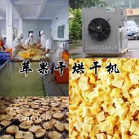 金凯高温热泵苹果烘干机厂家零售招商代理价格