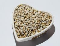 大叔的田薏米农家自产薏米仁纯天然苡仁新货五谷杂粮