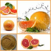 西柚粉 天然果粉 西柚提取物 质优价廉