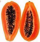 优质高活力 木瓜蛋白酶 60万活力
