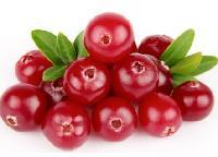 蔓越莓粉 蔓越莓汁粉 果汁粉