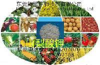 山梨酸钾供应食品级厂家直销 保证质量