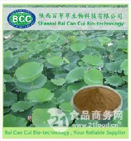 优质荷叶提取物 利尿 排毒减肥荷叶碱厂家低价供应