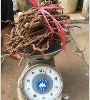 海南正宗山胡椒根 山地种植,农家自产 10斤袋装