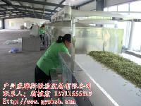 金银花干燥设备
