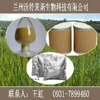 豌豆苗浸膏粉UV检测98%含量