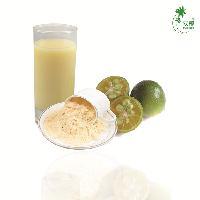 海南双椰新鲜金桔粉 水果粉 不含香精色素