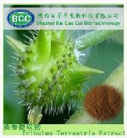 刺蒺藜提取物  蒺藜总皂甙20% 40%90%
