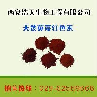 天然苋菜红色素生产厂家