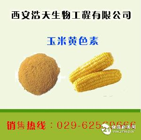 玉米黄色素生产厂家