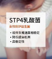 STP4乳酸菌