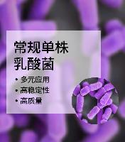 常规单株乳酸菌