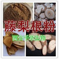 藤梨根提取物纯天然植物提取全水溶厂家生产藤梨根粉