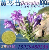 优质黄芩苷 黄芩甙90% 包邮