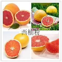 天然葡萄柚提取物 厂家直销 现货包邮