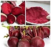 甜菜红色素  天然甜菜红