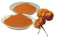 厂家现货 万寿菊提取物 叶黄素 水溶性 天然着色剂 叶黄素1kg起批