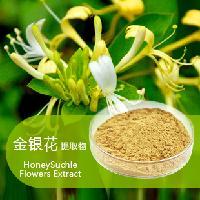 金银花提取物  绿原酸   金银花粉   大量现货  包邮