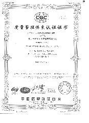 9001副本中文