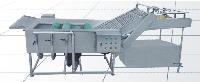 气浴卫星毛刷清洗机-诸城市瑞恒食品机械